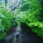 Hunting down the best puddles for splashing Lead the wayhellip