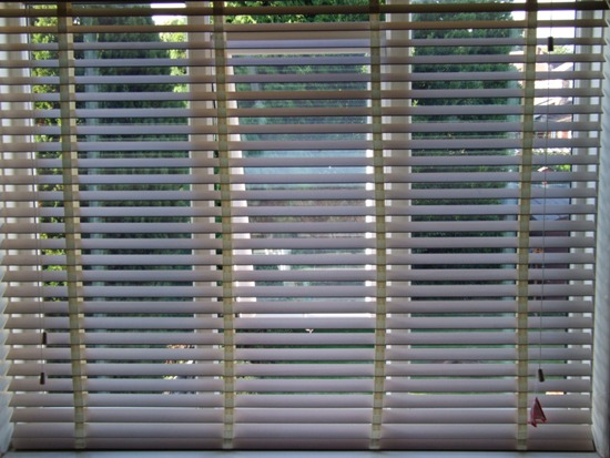 Hillarys Blinds