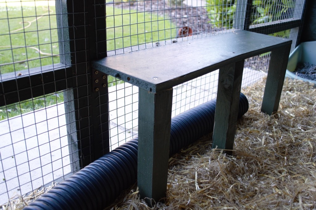 DIY ferret hutch 20