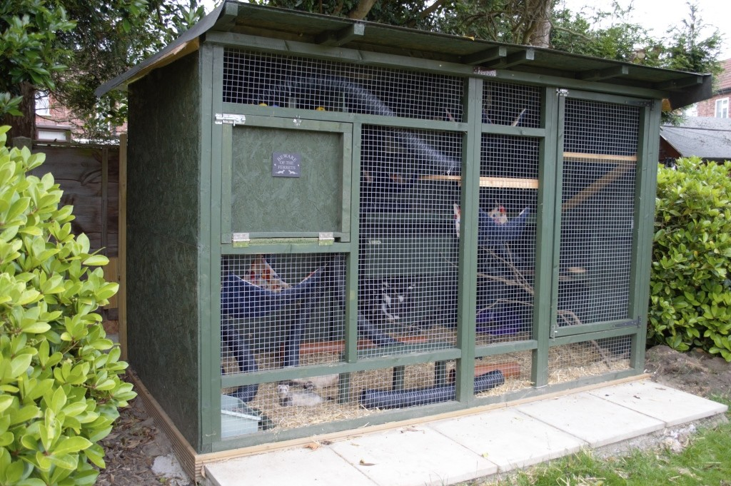 DIY ferret hutch 21
