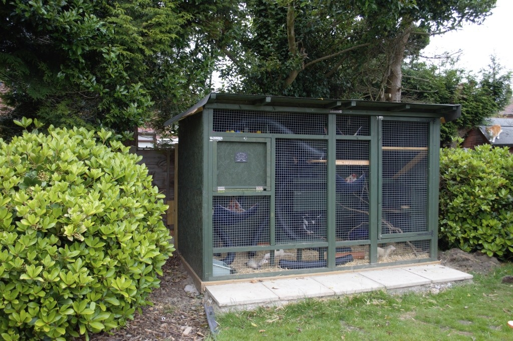 DIY ferret hutch 23