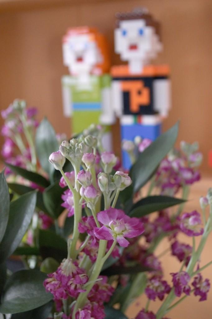 debehams flowers 02