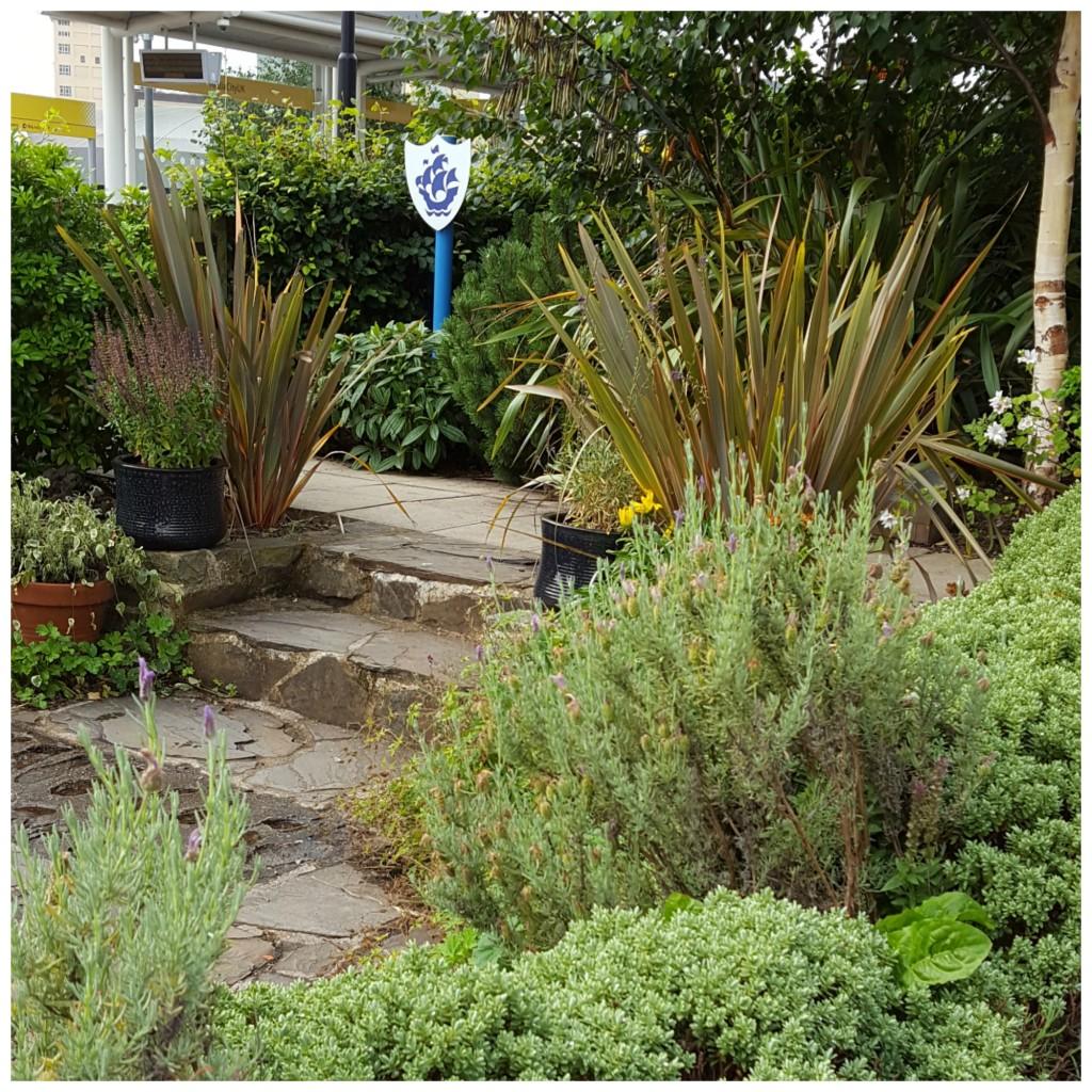 Blue Peter Garden