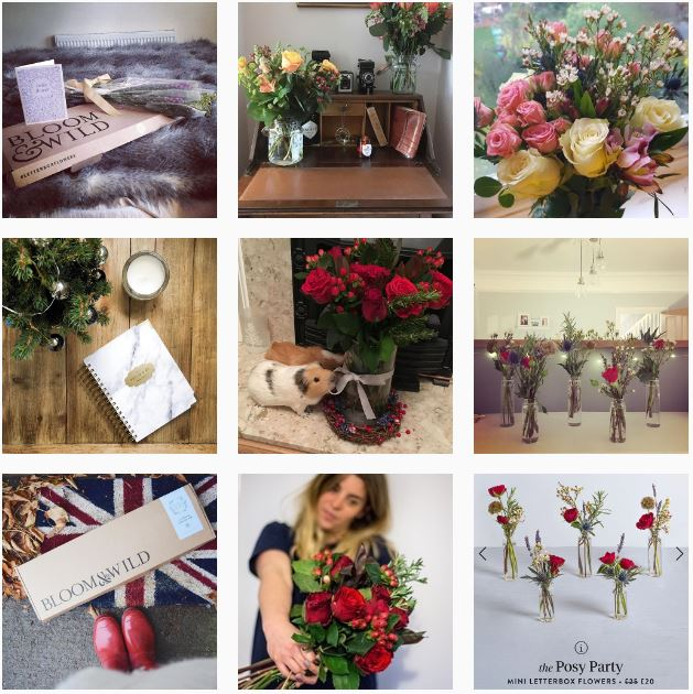 Flower subscription box