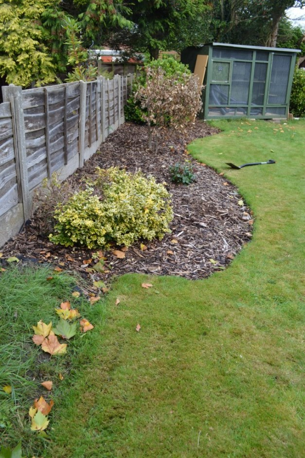 Garden Borders In 20 Minutes An Ecoborders Review Well